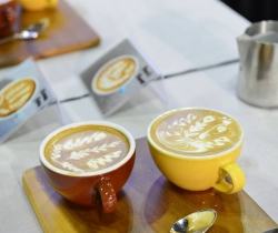 Coffee festivals in Singapore